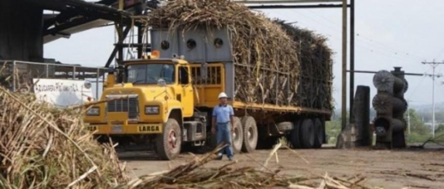 México busca 8,148 mdp con venta de ingenios azucareros